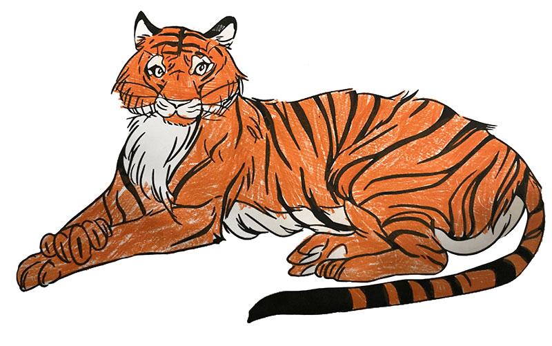 zootier malvorlage kostenlos » zootiere ausmalbilder