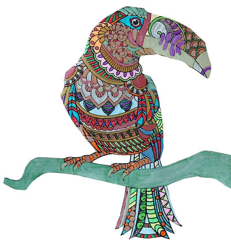 Mandala Tukan pintado